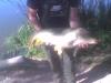 ifjvargazoltan1_15kg_2010-06-19